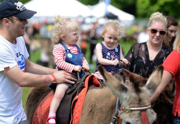 Donkey rides [2118756].jpg